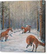 Forest Games Canvas Print