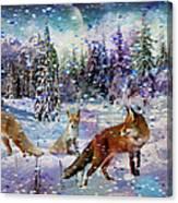 Fox Storm Canvas Print