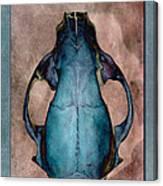 Foxbone IIi Canvas Print