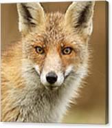 Foxy Face Canvas Print