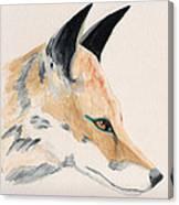 Foxy Lady Canvas Print