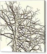 Fractal Ghost Tree - Inverted Canvas Print