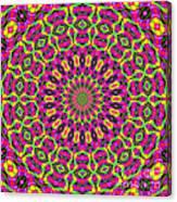 Fractalscope 7 Canvas Print