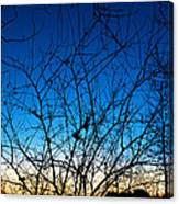 Fractured Sunset Canvas Print