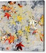 Fragments Of Fall Canvas Print