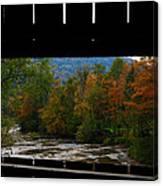 Framed Fall Foliage Canvas Print