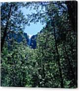 Framing A Waterfall Canvas Print