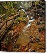 Franconia Notch Lush Greens And Rushing Waters Canvas Print