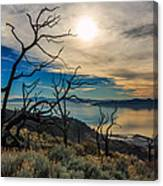 Frary Trail Trees Canvas Print