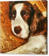 Freckles Canvas Print