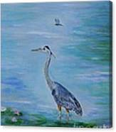 Free Spirit Blue Heron Canvas Print