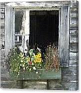 Free Window Canvas Print