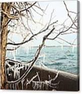 Freezing Rain Canvas Print