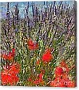 French Lavender Field Canvas Print