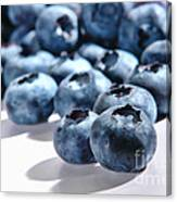 Fresh And Natural Blueberries Close Up On White Canvas Print