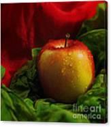 Fresh Apple On Silk Canvas Print
