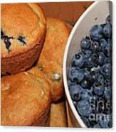 Fresh Blueberries And Muffins Canvas Print
