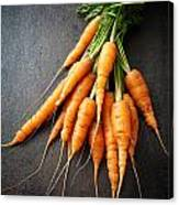 Fresh Carrots Canvas Print