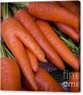 Fresh Carrots On A Street Fair In Brazil Canvas Print