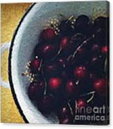 Fresh Cherries Canvas Print
