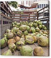 Fresh Coconuts Delivery Truck Canvas Print