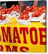 Cedar Park Texas Fresh Tomatoes Canvas Print
