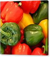Fresh From The Market - Sweet Peper Mix Canvas Print
