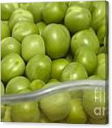 Fresh Green Peas Canvas Print