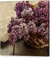 Fresh Lilacs In Brown Basket Canvas Print