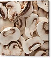 Fresh Mushrooms Canvas Print