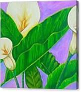 Fresh New Day Canvas Print