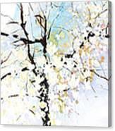 Fresh Pick No.394 Canvas Print