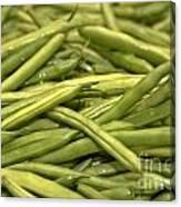 Fresh Picked Beans Canvas Print