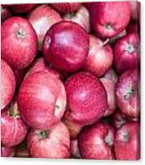 Fresh Red Apples Canvas Print