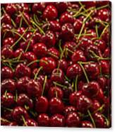 Fresh Red Cherries Canvas Print
