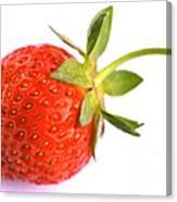 Fresh Red Strawberry Canvas Print
