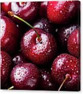 Fresh Ripe Black Cherries Background Canvas Print