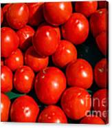 Fresh Ripe Red Tomatoes Canvas Print