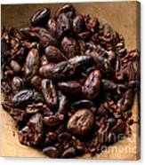 Fresh Roasted Cocoa Beans - Nibs Canvas Print
