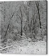 Fresh Snow At Roquin Canvas Print