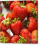Fresh Strawberry Canvas Print
