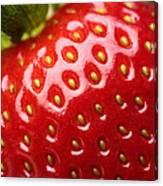 Fresh Strawberry Close-up Canvas Print