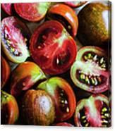 Freshly Cut Tomatoes Canvas Print