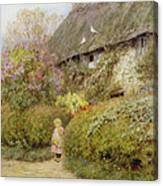 Freshwater Cottage Wc On Paper Canvas Print