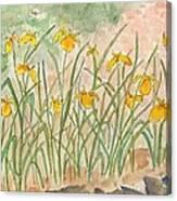 Lkp's Friendly Garden Canvas Print