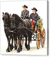 Friesian Carriage Canvas Print