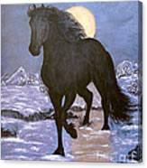 Friesian Horse Blue Moonlight Setting Canvas Print