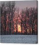 Frigid Warmth Canvas Print
