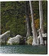 Frio River 2 Canvas Print