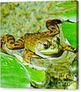 Frog  Abby Aldrich Rockefeller Garden Canvas Print